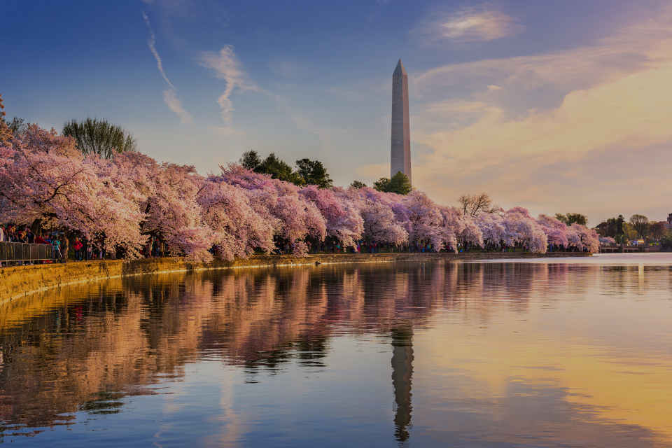 Monument Parking Partners With Propark Mobility to Enhance Washington, D.C. Parking